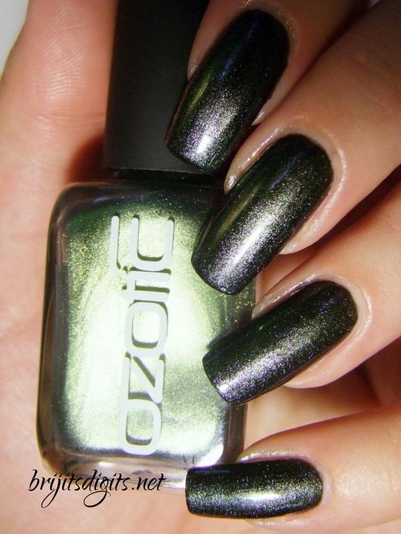503 Ozotic-004