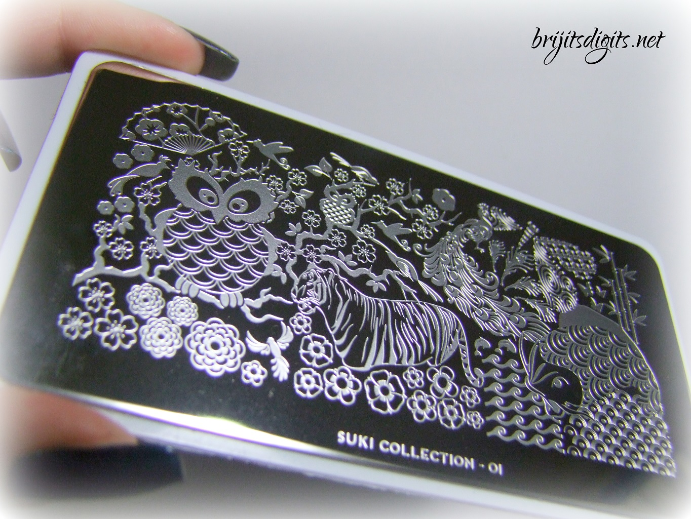 Moyou London Suki Collection 01 Nail Art Stamping Plate Brijits
